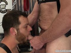 Mature bear covers hairy stud with jizz