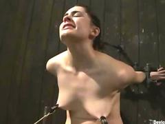 Bound and clamped babe rides Sybian until cum
