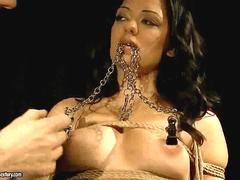 Sexy brunette getting bondaged and punished feature