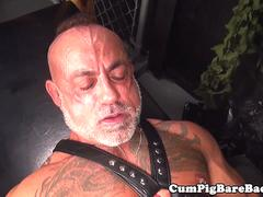 Grey wolf doggystyled after sucking cock
