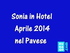 Around the hotel - Pavia 2014