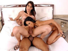 Shemale Surprise Group Bareback sex